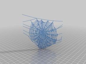 spiderweb collection