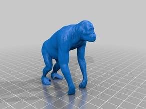オランウータン(Orangutan)3Dデータ
