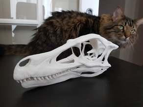 Full size velociraptor skull - Easier print