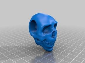 Skull Paracord Bead