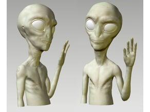 Paul Sculpt - Bust