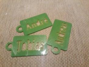 Named badge ID or chip card holder