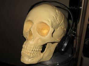 XP Deus WS4 Headphones