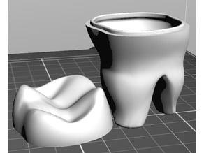 Teeth Box