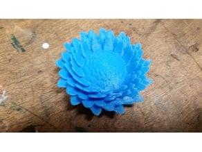 Flat bottom of flower