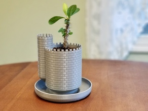 Planttlement - Castle Planter with Moat, for Succulents