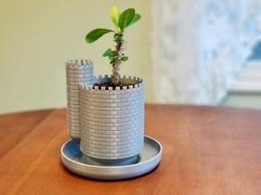 Planttlement - Castle Planter with Moat, for Succulents