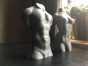 Male torso optimised for vase mode