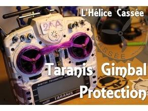 L'Hélice Cassée _ Taranis Gimbal protections