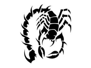 scorpion stencil 2