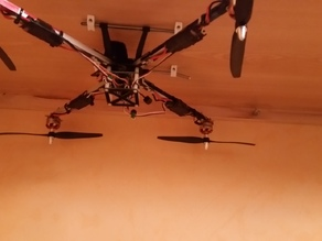 Multicopter and copter holder