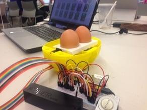 IoT Chicken Hatchery