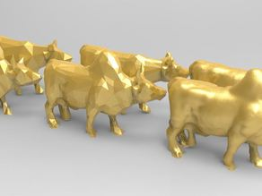 Brahman Bull and Moo Cow
