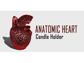 Anatomic Heart Candle Holder