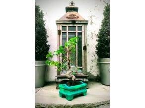 Bonsai Plant Pot