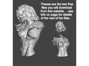 We are the Law- Judge Anderson Torso Free Model 5 – by SPARX