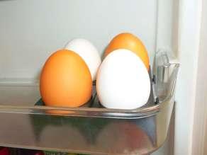 Best Egg Tray Ver2
