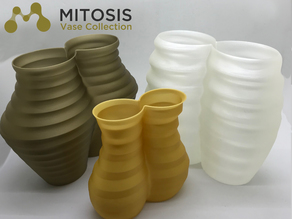 Mitosis Vase Collection