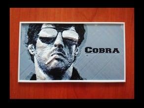 Cobra Placa