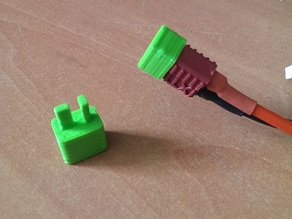 T-plug Cap