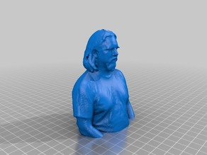 Site 3 open house 3D scans from 2013-01-11