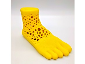 Lattice Foot