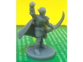 High Elf Druid