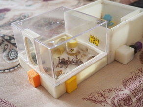 Arena for the modular ant farm