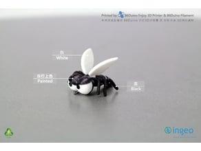 Mosquito / 蚊子
