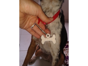 Dog Name Tag-Köpek İsimlik