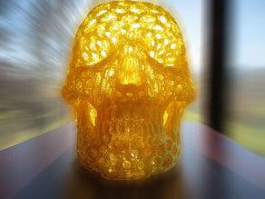 Skull Voronoi