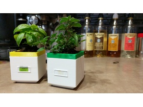 Square Self-Watering Planter (Mini)