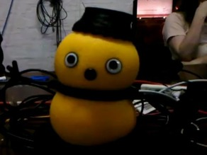 Keepon Accessories