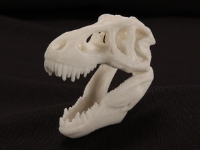 MakerBot Pocket T-Rex Skull