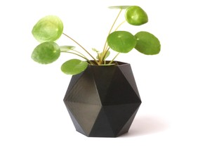 Hexagonal flower pot #3