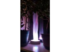 Pentagram Vase