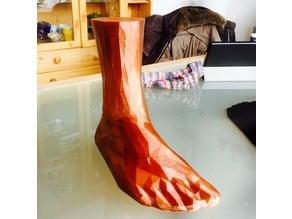 Sock Blocker (3D Foot) EU40 25cm Polygonal