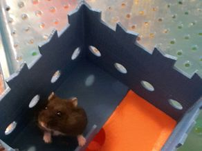 tower for hamster