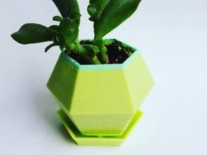 Hexagon Succulent Planter Water Tray