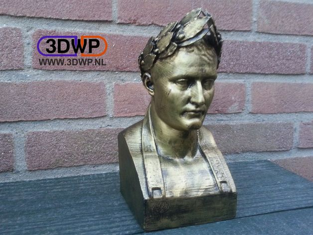 Napoleon Bust 3D Scan