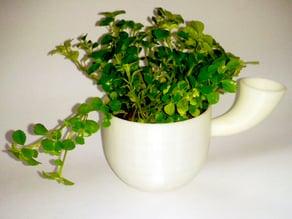 Strange pot for your plants