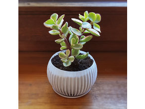 Stripy Sphere Planter