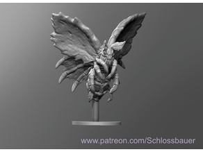 Cadaver Moth
