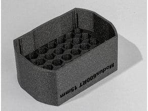 Honeycomb grid Modus 600RT flash