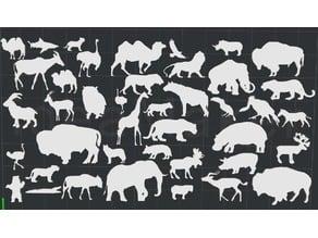 Animals 2D Wall Art