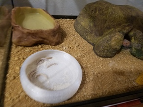 Gecko Food Dish for Worms