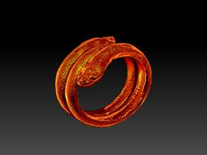 2 Headed Snake Bracelet