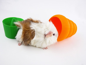 Guinea Pig Carrot Toy