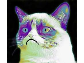 GRUMPY CAT 2D meme