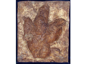 Footprint Tyrannosaurus_Rex